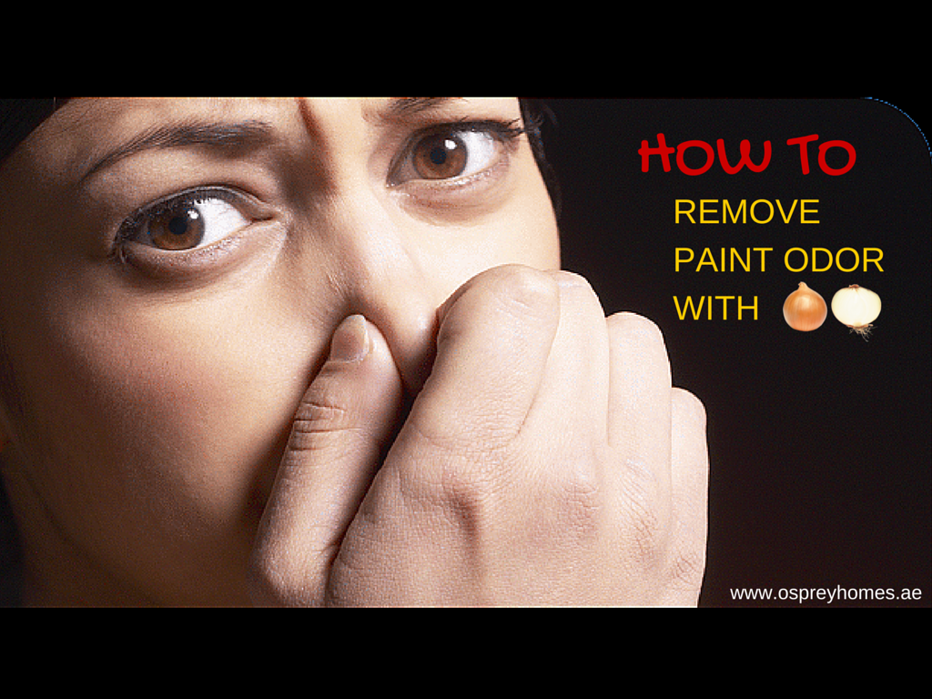 how to remove paint odor with an onion. Black Bedroom Furniture Sets. Home Design Ideas