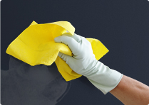 Stain resistant interior painting services